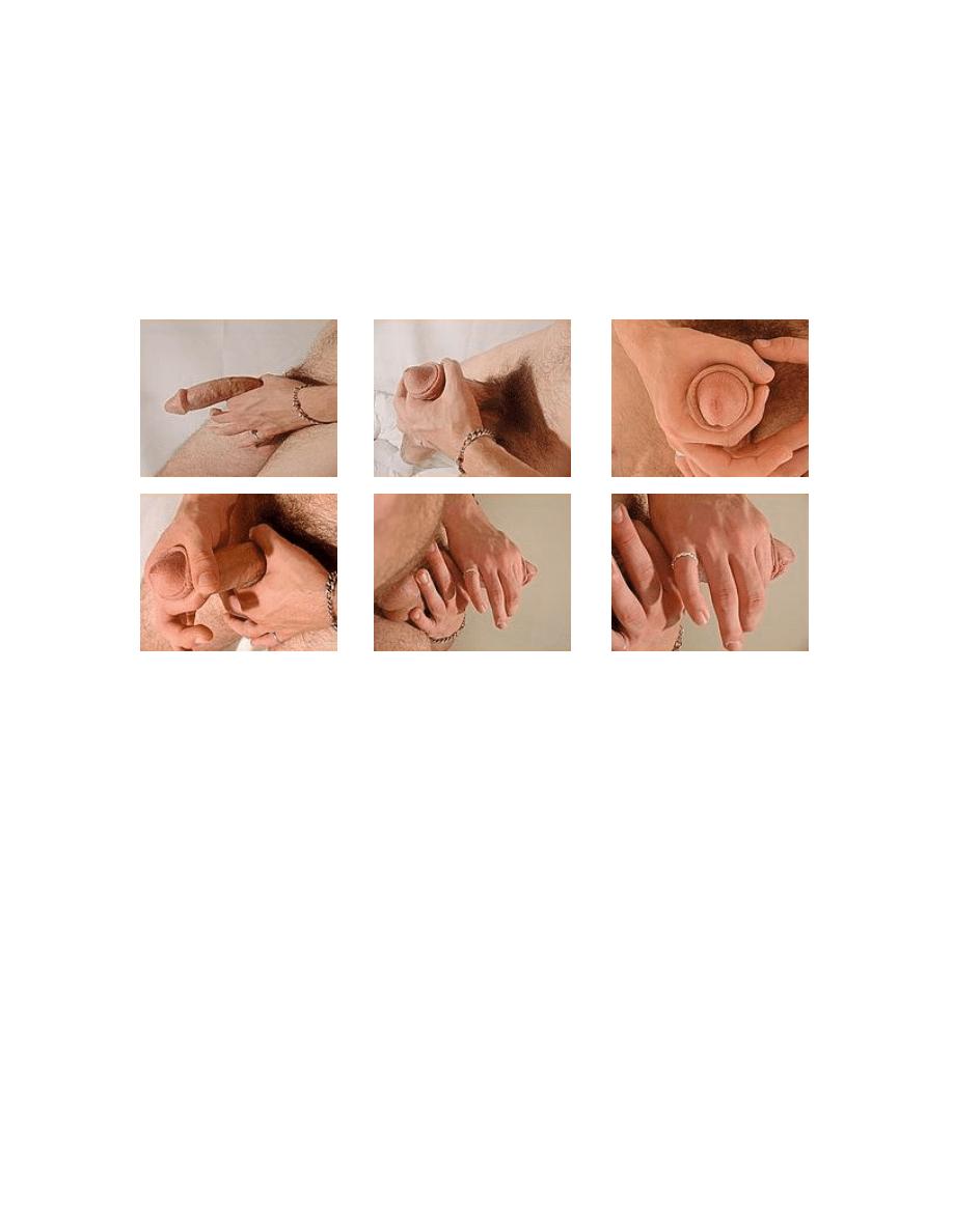 ćwiczenia na penisa)